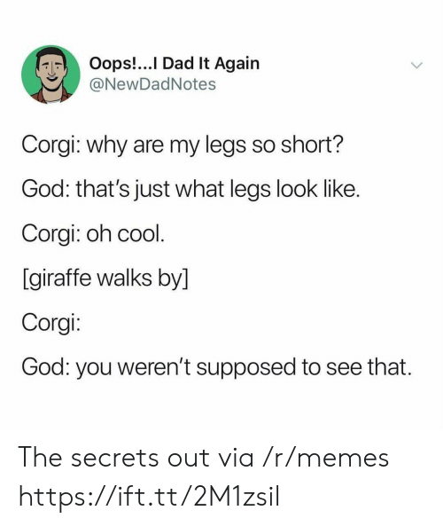 corgi: Oops!...I Dad It Again  @NewDadNotes  Corgi: why are my legs so short?  God: that's just what legs look like.  Corgi: oh cool.  [giraffe walks by]  Corgi:  God: you weren't supposed  to see that. The secrets out via /r/memes https://ift.tt/2M1zsil