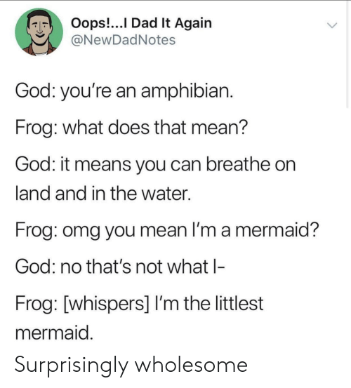 Dad, God, and Omg: Oops!...l Dad It Agaiin  @NewDadNotes  God: you're an amphibian  Frog: what does that mean?  God: it means you can breathe on  land and in the water.  Frog: omg you mean I'm a mermaid?  God: no that's not what l-  Frog: [whispers] I'm the littlest  mermaid Surprisingly wholesome