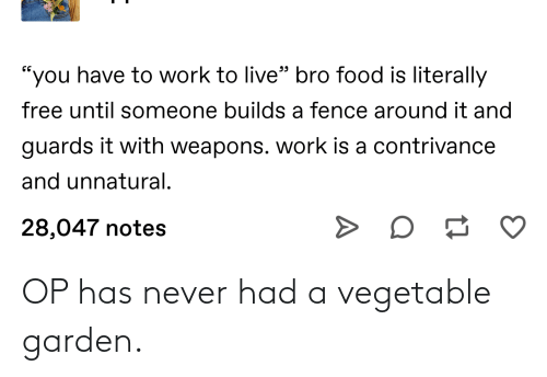 Conservative Memes: OP has never had a vegetable garden.