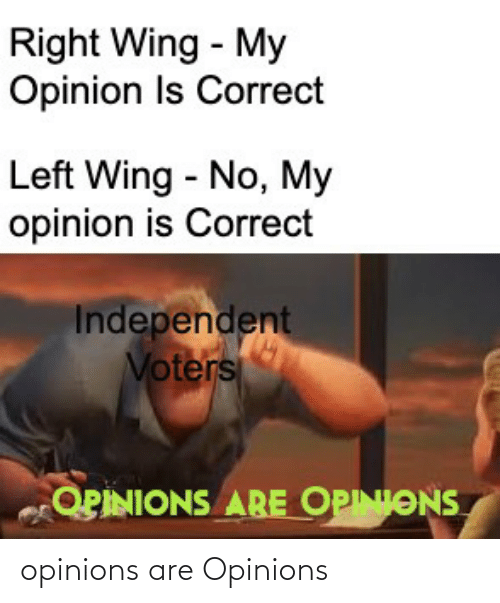 Conservative Memes: opinions are Opinions