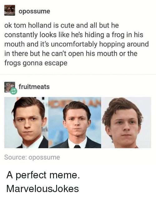 Cute, Meme, and Memes: opossume  ok tom holland is cute and all but he  constantly looks like he's hiding a frog in his  mouth and it's uncomfortably hopping around  in there but he can't open his mouth or the  frogs gonna escape  毘fruitmeats  Source: opossume A perfect meme. MarvelousJokes