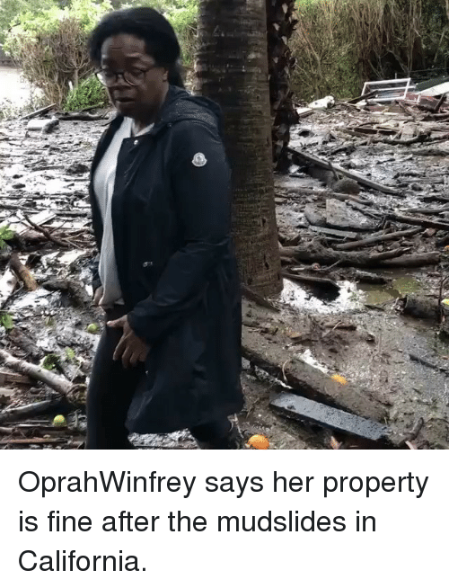 Memes, California, and 🤖: OprahWinfrey says her property is fine after the mudslides in California.