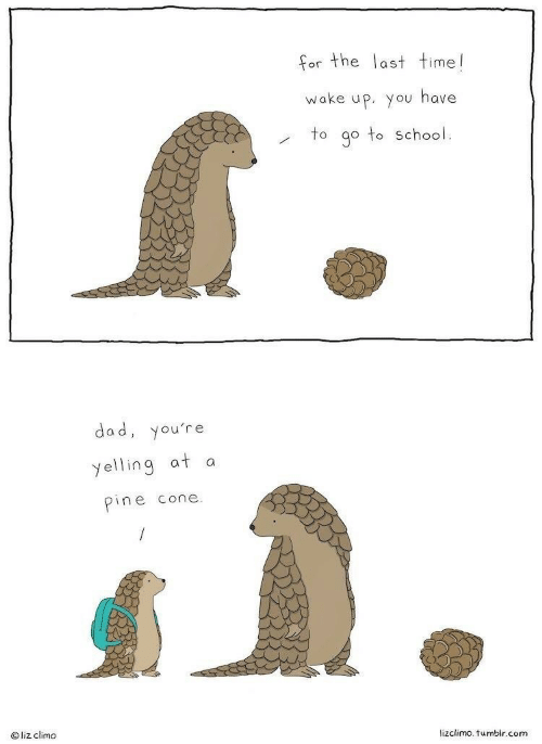 go to school: or the last time!  wake up. you have  to go to School.  dad, you're  yelling at a  pine cone  O liz climo  lizclimo. tumblr.conm