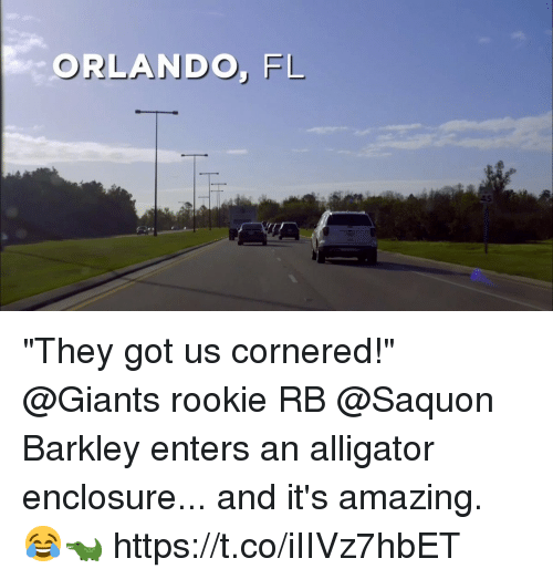 "Memes, Alligator, and Giants: ORLANDO, FL ""They got us cornered!""   @Giants rookie RB @Saquon Barkley enters an alligator enclosure... and it's amazing. 😂🐊 https://t.co/iIIVz7hbET"