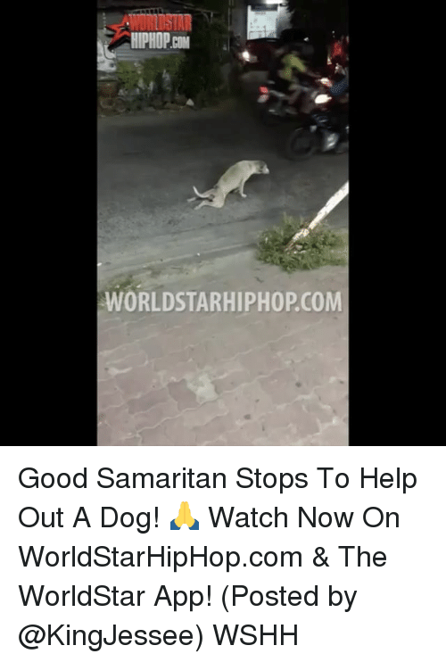 Memes, Worldstarhiphop, and 🤖: ORLOSTAR  HIPHOP  WORLDSTARHIPHOPCOM Good Samaritan Stops To Help Out A Dog! 🙏 Watch Now On WorldStarHipHop.com & The WorldStar App! (Posted by @KingJessee) WSHH