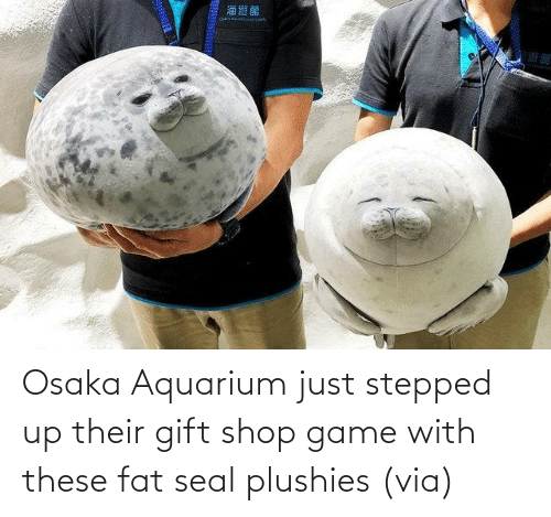shop: Osaka Aquarium just stepped up their gift shop game with these fat seal plushies (via)