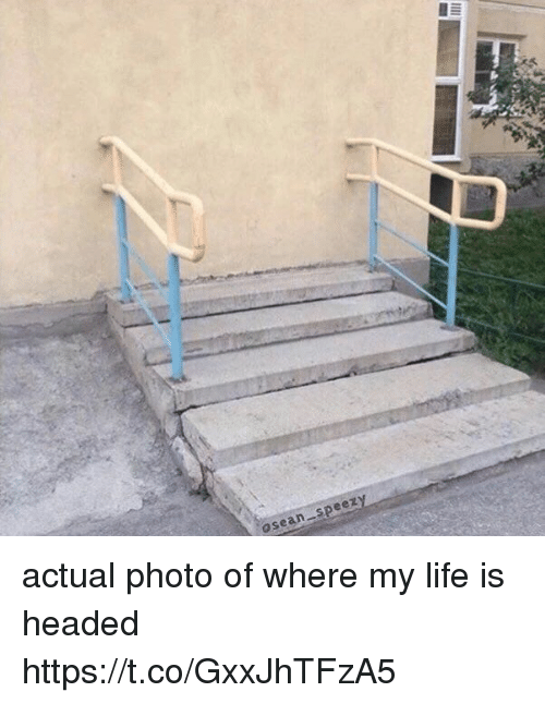 Life, Girl Memes, and Photo: osean speezy actual photo of where my life is headed https://t.co/GxxJhTFzA5