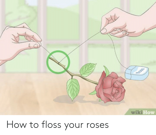 How To, Wiki, and How: oss  wiki How How to floss your roses