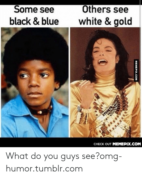 Omg, Tumblr, and Black: Others see  Some see  white & gold  black & blue  CНЕCK OUT MЕМЕРIХ.COM  МЕМЕРIХ.Сом What do you guys see?omg-humor.tumblr.com