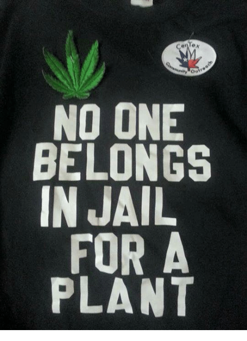 Jail, Memes, and 🤖: Oui  NO ONE  BELONGS  IN JAIL  FOR A  PLANT