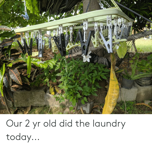 Laundry: Our 2 yr old did the laundry today...