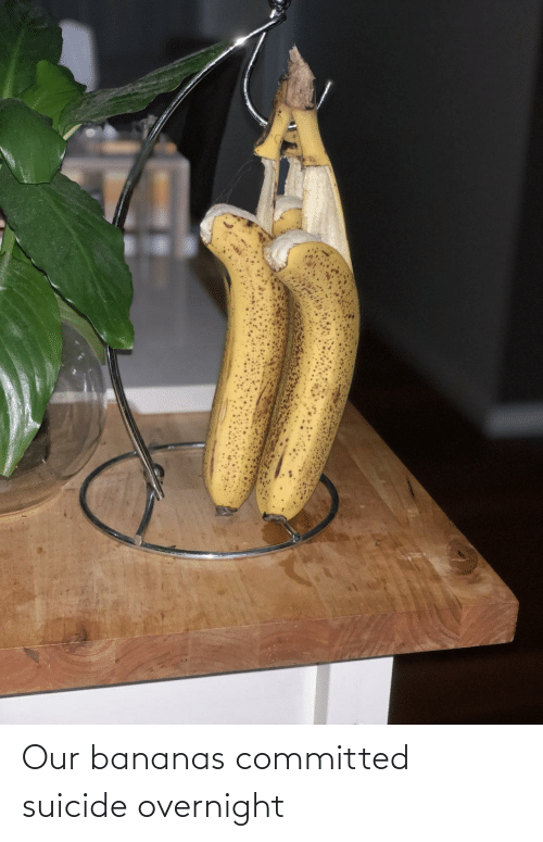 overnight: Our bananas committed suicide overnight