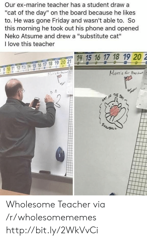 """Friday, Love, and Phone: Our ex-marine teacher has a student draw a  """"cat of the day"""" on the board because he likes  to. He was gone Friday and wasn't able to. So  this morning he took out his phone and opened  Neko Atsume and drew a """"substitute cat""""  I love this teacher  14 15 16 17 18 19 20 2  15 1  910 11 12 13 14 15 16 17 18 19 20 2  910 1 12 13 14 15 16 17 18 19 20 21  Morris fer Prst Wholesome Teacher via /r/wholesomememes http://bit.ly/2WkVvCi"""