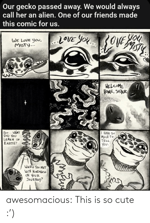 sister: Our gecko passed away. We would always  call her an alien. One of our friends made  this comic for us.  You  20VE YOU3OVE  WE LOVE you,..LOVE YOu  WE LOVE You,  MISTY...  HELCOME  HOME, SISTER  So... WHAT  DID YOU  LEARN OF  EARTH?  I HAVE SO  MucH TO  TELL  You.  WERE YOU MET  WITH KINDNESS  ON YOUR  JOURNEY? awesomacious:  This is so cute :')