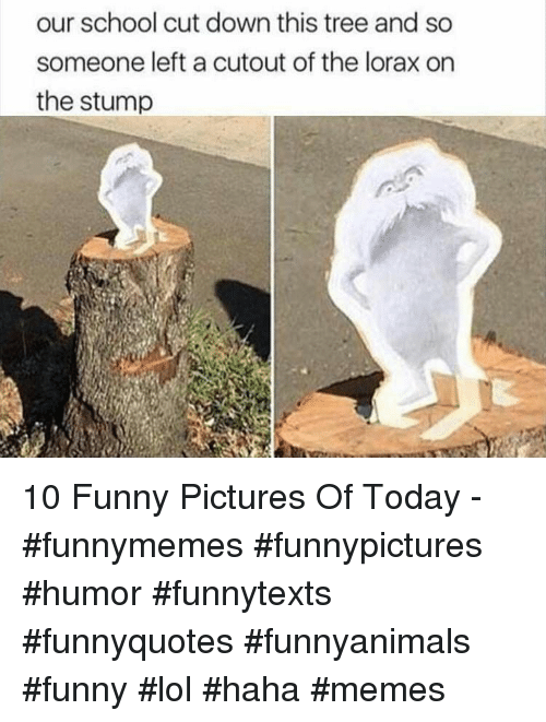 Funny Pictures Of: our school cut down this tree and so  someone left a cutout of the lorax on  the stump 10 Funny Pictures Of Today - #funnymemes #funnypictures #humor #funnytexts #funnyquotes #funnyanimals #funny #lol #haha #memes