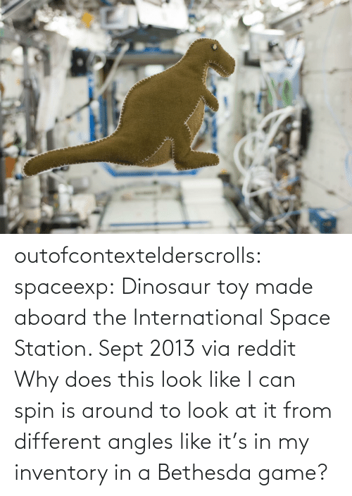 Dinosaur: outofcontextelderscrolls: spaceexp:  Dinosaur toy made aboard the International Space Station. Sept 2013 via reddit   Why does this look like I can spin is around to look at it from different angles like it's in my inventory in a Bethesda game?