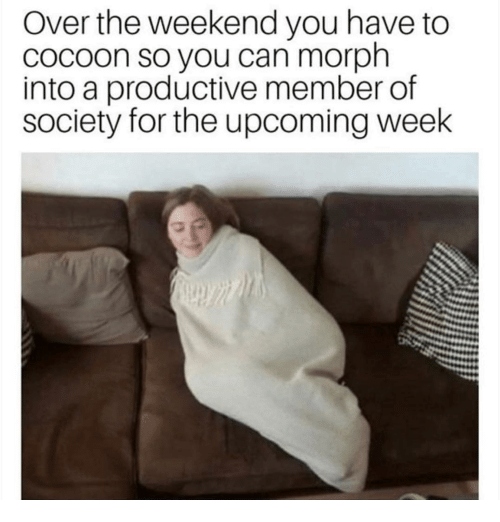 Funny, The Weekend, and Weekend: Over the weekend you have to  cocoon so you can morph  into a productive member of  society for the upcoming week