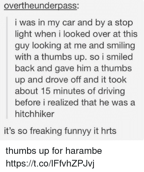 Driving, Back, and Harambe: overtheunderpass:  i was in my car and by a stop  light when i looked over at this  guy looking at me and smiling  with a thumbs up. so i smiled  back and gave him a thumbs  up and drove off and it took  about 15 minutes of driving  before i realized that he was a  hitchhiker  it's so freaking funnyy it hrts thumbs up for harambe https://t.co/lFfvhZPJvj