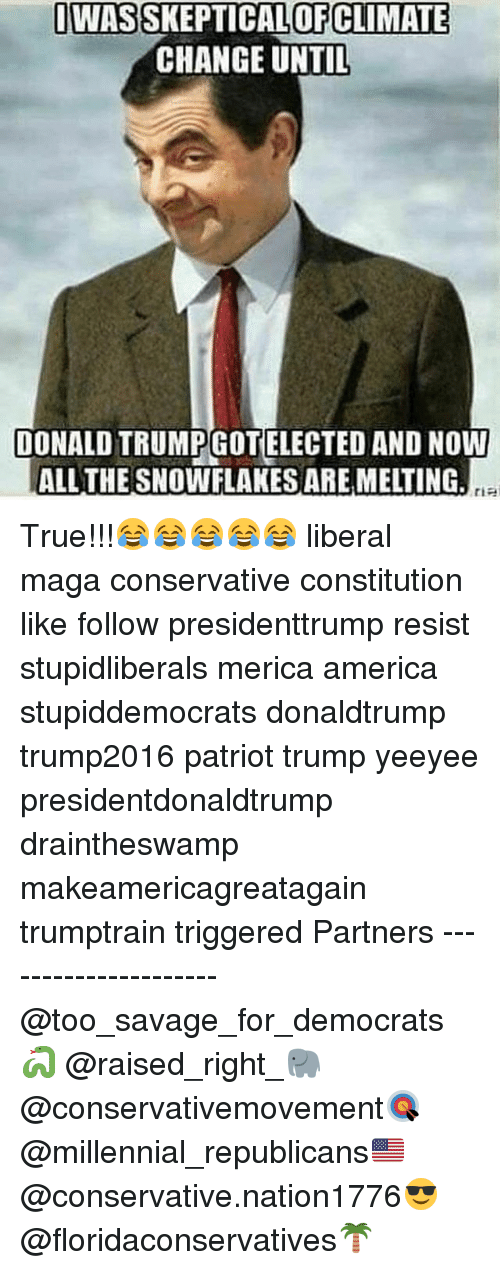 America, Memes, and Savage: OWASSKEPTICALOFCLIMATE  CHANGE UNTIL  DONALD TRUMPGOTELECTED AND NOW  ALL THE SNOWFLAKES ARE MELTING, True!!!😂😂😂😂😂 liberal maga conservative constitution like follow presidenttrump resist stupidliberals merica america stupiddemocrats donaldtrump trump2016 patriot trump yeeyee presidentdonaldtrump draintheswamp makeamericagreatagain trumptrain triggered Partners --------------------- @too_savage_for_democrats🐍 @raised_right_🐘 @conservativemovement🎯 @millennial_republicans🇺🇸 @conservative.nation1776😎 @floridaconservatives🌴
