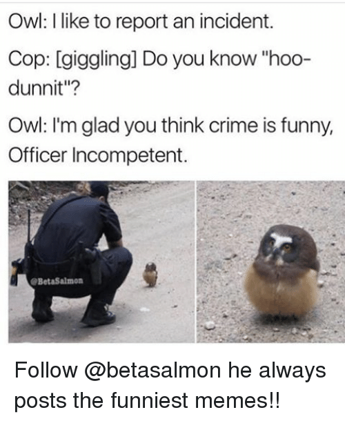 "Memes, 🤖, and Owl: Owl: like to report an incident.  Cop: giggling] Do you know hoo-  dunnit""?  Owl: I'm glad you think crime is funny,  Officer Incompetent.  B Follow @betasalmon he always posts the funniest memes!!"