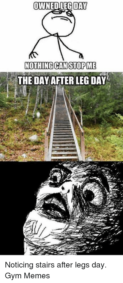 Gym, Memes, and Leg Day: OWNEDILEG DAY  NOTHING CAN STOP ME  THE DAY AFTER LEG DAY Noticing stairs after legs day.   Gym Memes