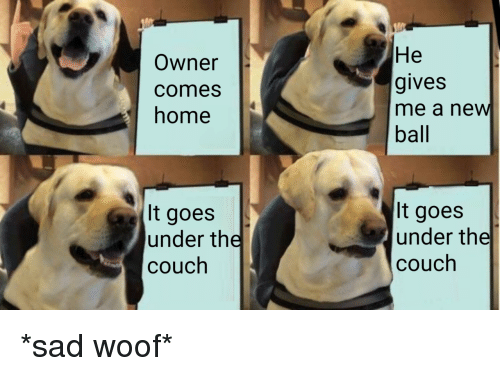Couch, Home, and Sad: Owner  comes  home  He  gives  me a new  ball  It goes  under the  couch  It goes  under the  couch *sad woof*