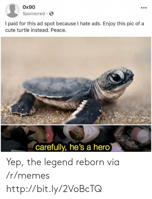 reborn: Ox90  Sponsored  I paid for this ad spot because I hate ads. Enjoy this pic of a  cute turtle instead. Peace.  carefully, he's a hero) Yep, the legend reborn via /r/memes http://bit.ly/2VoBcTQ