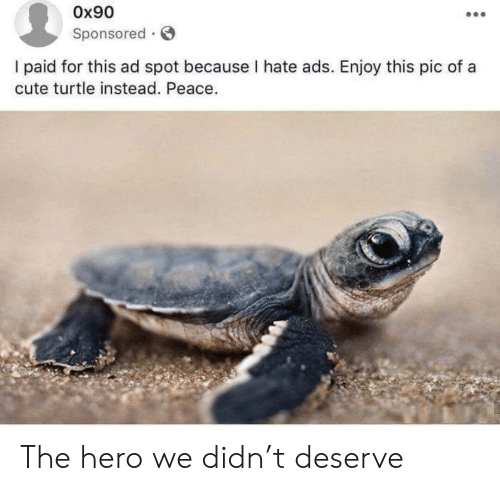 Cute, Turtle, and Peace: Ox90  Sponsored  I paid for this ad spot because I hate ads. Enjoy this pic of a  cute turtle instead. Peace. The hero we didn't deserve