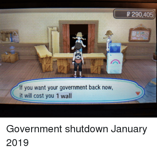Government, Back, and Will: P 290,405  If you want your government back now,  it will cost you 1 wall Government shutdown January 2019