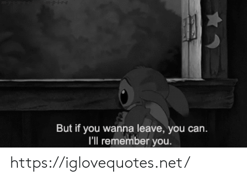Net, Can, and Remember: -p-i-re  m-y-s-w  But if you wanna leave, you can.  I'll remember you. https://iglovequotes.net/
