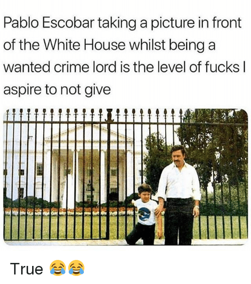 Crime, Funny, and Pablo Escobar: Pablo Escobar taking a picture in front  of the White House whilst being a  wanted crime lord is the level of fucks l  aspire to not give True 😂😂