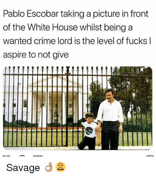 Crime, Memes, and Pablo Escobar: Pablo Escobar taking a picture in front  of the White House whilst being a  wanted crime lord is the level of fucks l  aspire to not give  immiI Savage 👌🏽😩