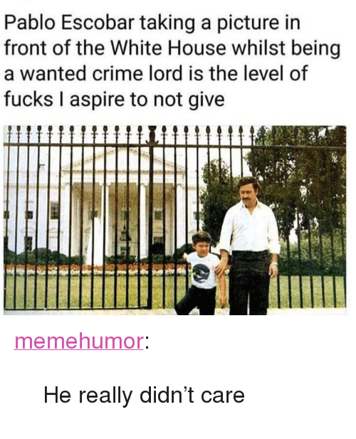"""Crime, Pablo Escobar, and Tumblr: Pablo Escobar taking a picture in  front of the White House whilst being  a wanted crime lord is the level of  fucks I aspire to not give <p><a href=""""http://memehumor.net/post/173854128896/he-really-didnt-care"""" class=""""tumblr_blog"""">memehumor</a>:</p>  <blockquote><p>He really didn't care</p></blockquote>"""