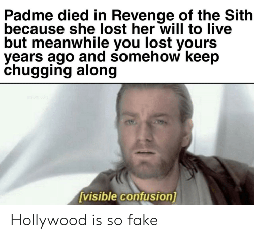 revenge of the sith: Padme died in Revenge of the Sith  because she lost her will to live  but meanwhile you lost yours  vears ago and somehow keep  chugging along  visible confusion] Hollywood is so fake