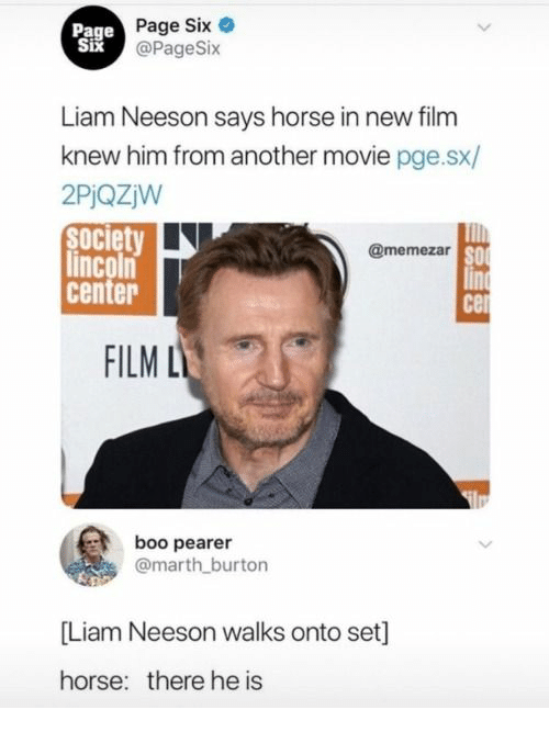 Boo, Liam Neeson, and Horse: Page  Six  Page Six e  @PageSix  Liam Neeson says horse in new film  knew him from another movie pge.sx/  2PiQZjW  society  lincoln  center  @memezar  SO  FILM L  boo pearer  @marth burton  [Liam Neeson walks onto set]  horse:  there he is