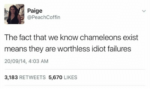 Idiot, Means, and They: Paige  @PeachCoffin  The fact that we know chameleons exist  means they are worthless idiot failures  20/09/14, 4:03 AM  3,183 RETWEETS 5,670 LIKES