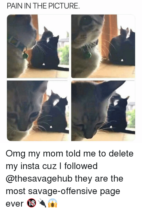 Memes, Omg, and Savage: PAIN IN THE PICTURE. Omg my mom told me to delete my insta cuz I followed @thesavagehub they are the most savage-offensive page ever 🔞🔌😱