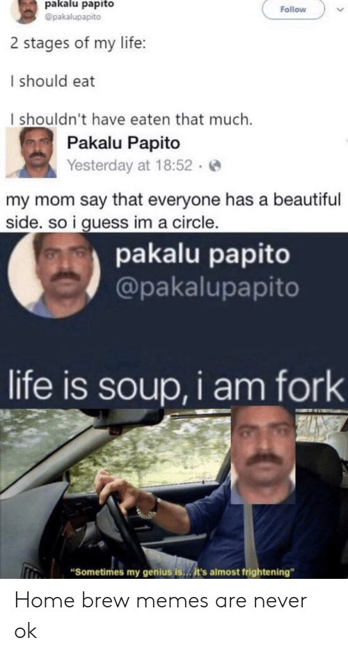"Beautiful, Life, and Memes: pakalu papito  @pakalupapito  Follow  2 stages of my life:  I should eat  I shouldn't have eaten that much  Pakalu Papito  Yesterday at 18:52.  my mom say that everyone has a beautiful  side. so i guess im a circle.  pakalu papito  @pakalupapito  life is soup, i am fork  ""Sometimes my genius is..it's almost frightening"" Home brew memes are never ok"