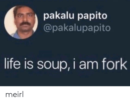 Life, MeIRL, and Soup: pakalu papito  @pakalupapito  life is soup, i am fork meirl