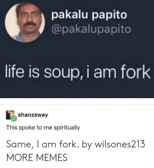 Dank, Life, and Memes: pakalu papito  @pakalupapito  life is soup,i am fork  shanzsway  This spoke to me spiritually Same, I am fork. by wilsones213 MORE MEMES