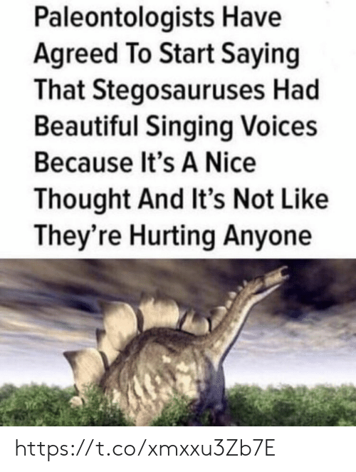 Beautiful, Memes, and Singing: Paleontologists Have  Agreed To Start Saying  That Stegosauruses Had  Beautiful Singing Voices  Because It's A Nice  Thought And It's Not Like  They're Hurting Anyone https://t.co/xmxxu3Zb7E