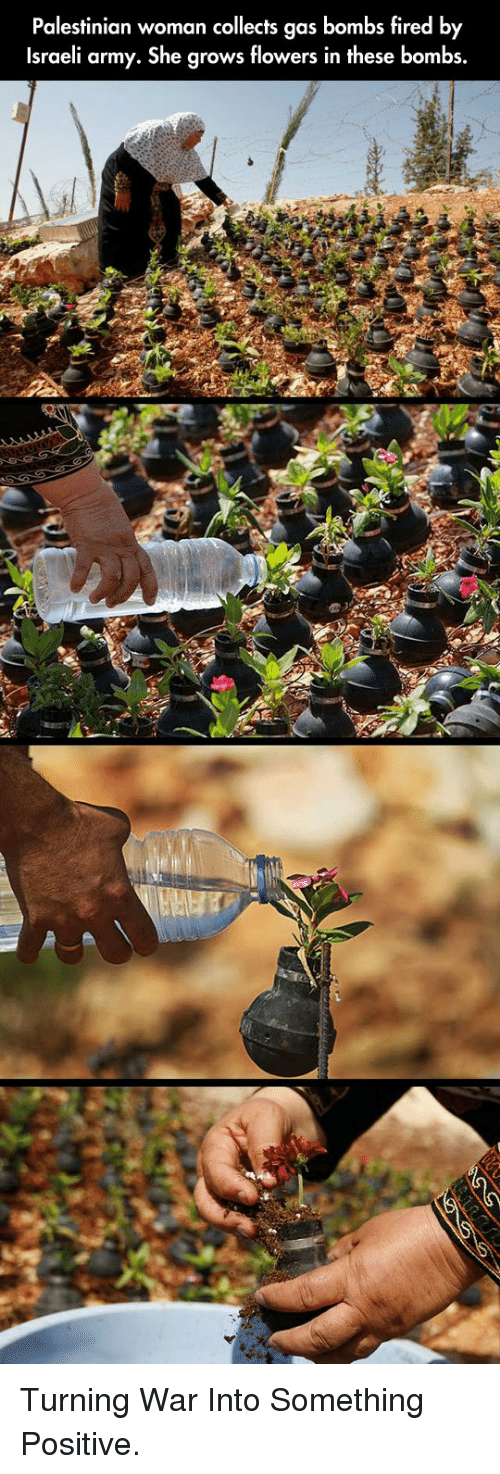 Army, Flowers, and Israeli: Palestinian woman collects gas bombs fired by  Israeli army. She grows flowers in these bombs. <p>Turning War Into Something Positive.</p>