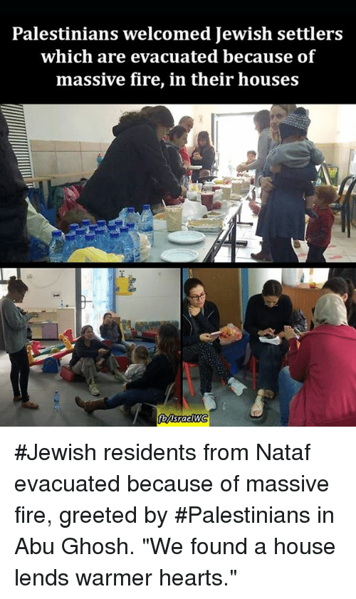 "Memes, Israel, and 🤖: Palestinians welcomed Jewish settlers  which are evacuated because of  massive fire, in their houses  fb Israel WG #Jewish residents from Nataf evacuated because of massive fire, greeted by #Palestinians in Abu Ghosh. ""We found a house lends warmer hearts."""