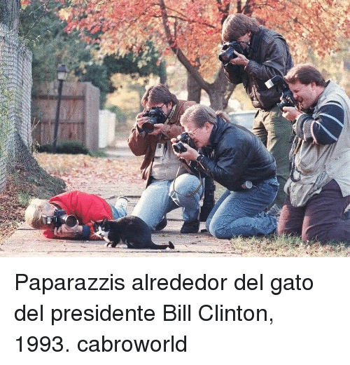 Bill Clinton, Clinton, and Bill: Paparazzis alrededor del gato del presidente Bill Clinton, 1993. cabroworld
