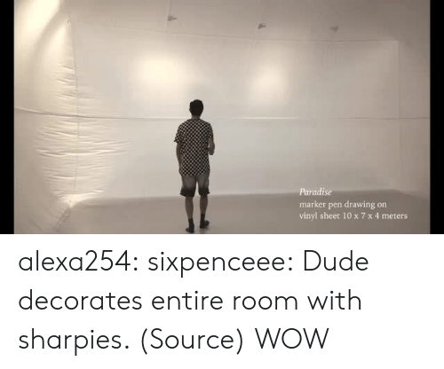 Dude, Paradise, and Reddit: Paradise  marker pen drawing on  vinyl sheet 10 x 7 x 4 meters alexa254:  sixpenceee:  Dude decorates entire room with sharpies. (Source)  WOW