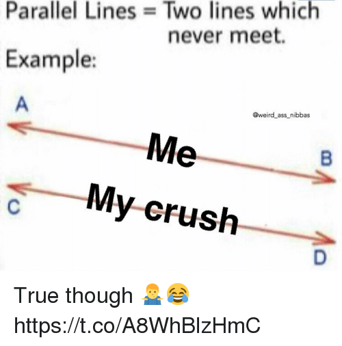 Ass, Crush, and True: Parallel Lines Two lines which  never meet.  Example:  @weird ass nibbas  My-crush True though 🤷‍♂️😂 https://t.co/A8WhBlzHmC