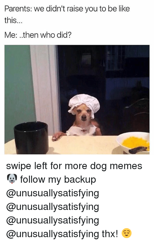 Be Like, Memes, and Parents: Parents: we didn't raise you to be like  this  Me: then who did? swipe left for more dog memes 🐶 follow my backup @unusuallysatisfying @unusuallysatisfying @unusuallysatisfying @unusuallysatisfying thx! 😌