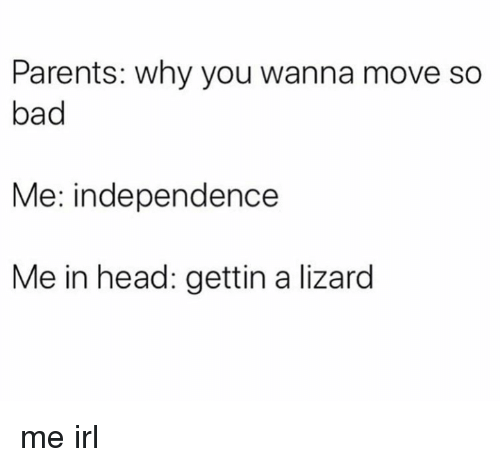Bad, Head, and Parents: Parents: why you wanna move so  bad  Me: independence  Me in head: gettin a lizard me irl