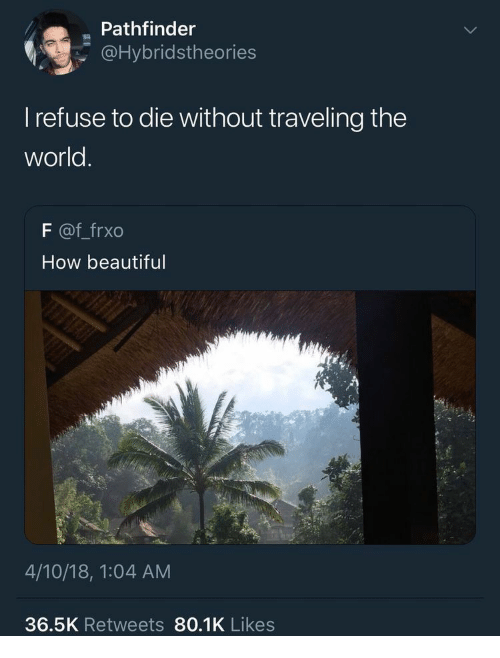 pathfinder: Pathfinder  @Hybridstheories  l refuse to die without traveling the  world  F @f frxo  How beautiful  4/10/18, 1:04 AM  36.5K Retweets 80.1K Likes