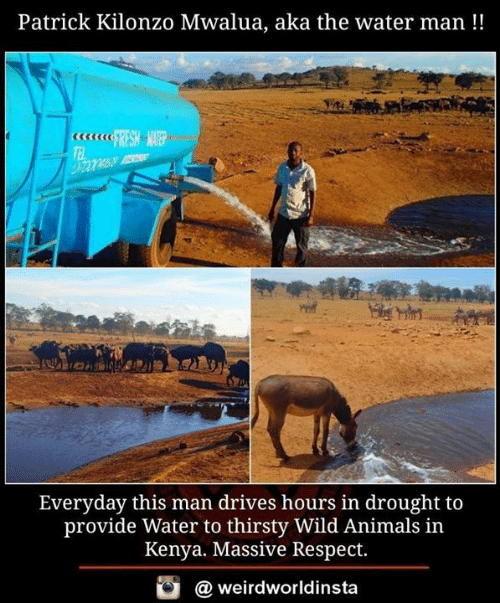 kenya: Patrick Kilonzo Mwalua, aka the water man!!  Everyday this man drives hours in drought to  provide Water to thirsty Wild Animals in  Kenya. Massive Respect.  @ weirdworldinsta